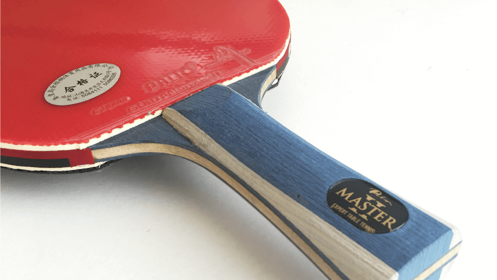 Palio Expert 2.0 ping pong paddle