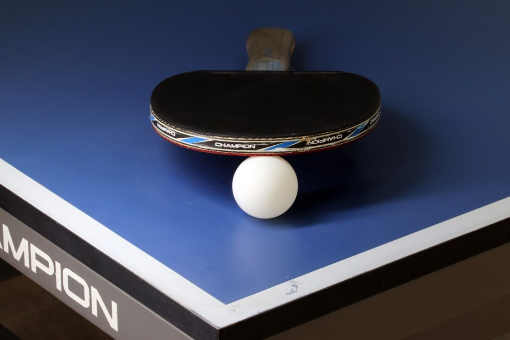 Butterfly 303 Table Tennis